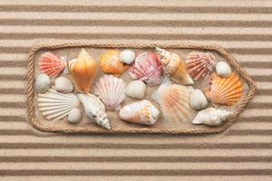 ponteiro feito de corda com conchas do mar foto