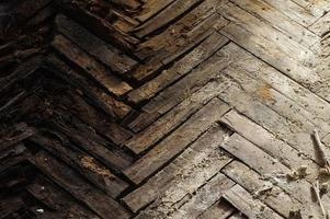 podridão do assoalho de parquete de madeira