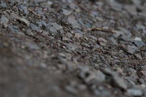 textura foto