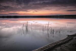 paisagem do pôr do sol - pequena grama verde na água