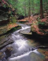 riacho de primavera foto