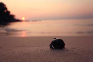 mar praia pôr do sol dourado foto