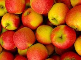 close up de maçãs vermelhas com gotas de água foto