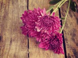 flores estilo retro vintage foto