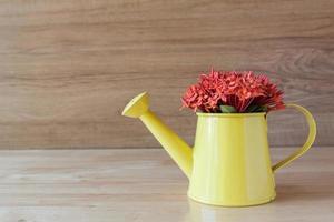 flor ixora vermelha em vaso verde sobre fundo de madeira foto