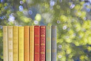 fila de livros sobre fundo borrado da natureza, espaço de cópia grátis foto