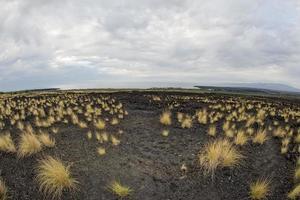 vista da paisagem do mar e lava na grande ilha do Havaí