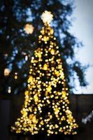 árvore de natal o efeito bokeh