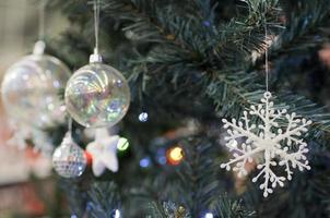 árvores de Natal foto