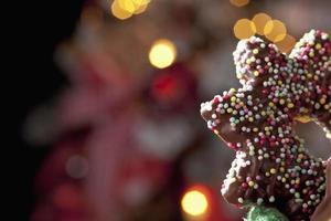 estrela de chocolate na frente da árvore de natal