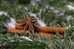 especiarias de natal, canela e anis estrelado
