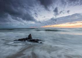 costa do mar Báltico ao pôr do sol, com troncos e raízes