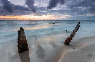 costa do mar Báltico ao pôr do sol, com troncos e raízes afogados