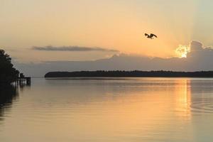 Everglade National Park ao nascer do sol