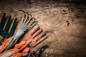 ferramenta de jardim