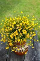 grande buquê de flores amarelas butercup