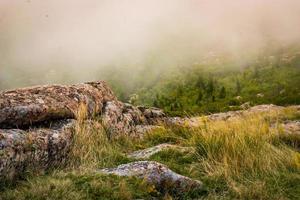 neblina na encosta do parque nacional de acádia, maine.