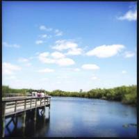 Parque Nacional Everglades na Flórida, EUA