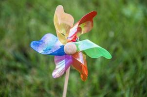 rosa dos ventos colorida (catavento)