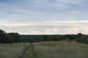 vista sobre o parque Kruger