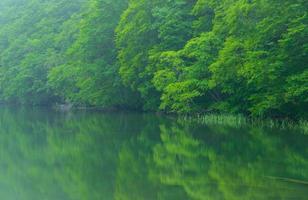 lagoa tsutanuma em aomori, japão