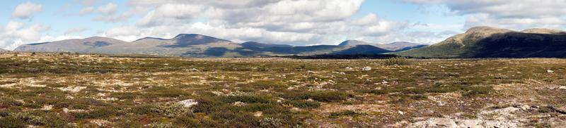 panorama landscape dovrefjell-sunndalsfjella national park (noruega
