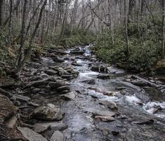 rio no grande parque nacional de montanhas esfumaçadas