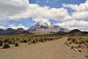 vulcão no parque nacional sajama, andes, bolívia