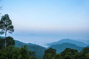 nevoeiro matinal parque nacional kaeng krachan, phetchaburi