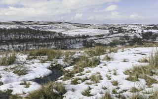 neve sobre os mouros de york norte, yorkshire, reino unido.