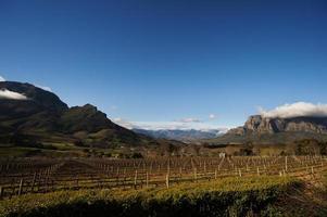 stellenbosch é a capital gourmet e do vinho da áfrica do sul