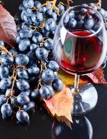uva e vinho tinto foto