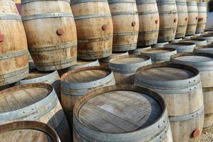 armazenamento de velhos barris em um castelo de vinhedos de bordeaux foto
