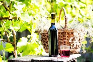 natureza morta com uma garrafa e um copo de vinho