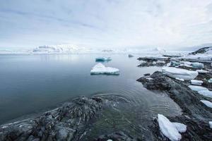 primavera ártica em Spitsbergen