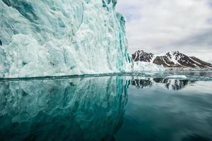 primavera ártica em spitsbergen sul.