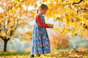 caminhada de outono foto