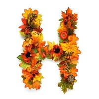 alfabeto de outono foto