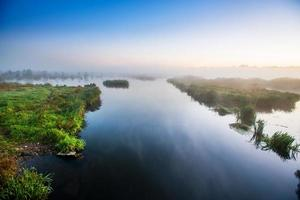 área de pântano foto