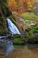 bela cascata em Galbena Canyon, Transilvânia