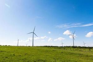 moinhos de vento para produção de energia elétrica foto