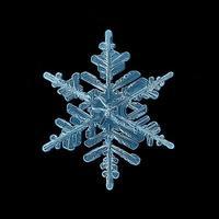 fundo preto cristal do floco de neve foto