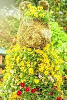 jardim com flores frescas foto