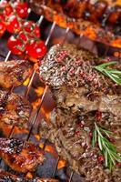 deliciosas carnes grelhadas no jardim