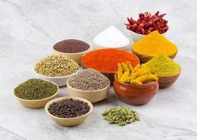 coleção de especiarias indianas