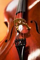 violoncelo foto