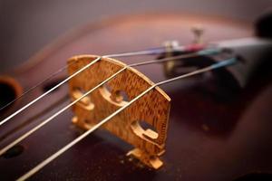 cordas de violino e corpo de violino foto