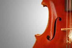 violino vintage