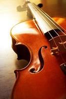 violino de madeira com luz do sol. foto