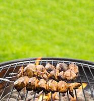 espeto de frango grelhado